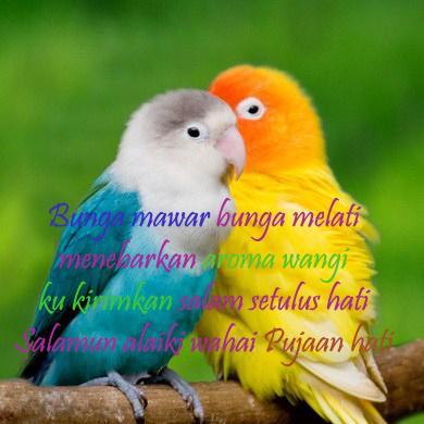 Kata Kata Romantis Memberi Salam Buat Pacar Atau Kekasih ...