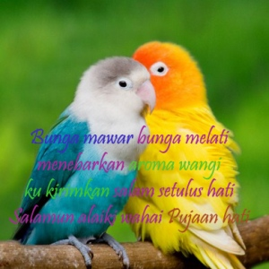 gambar romantis memberi salam